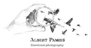 Albert Pamies