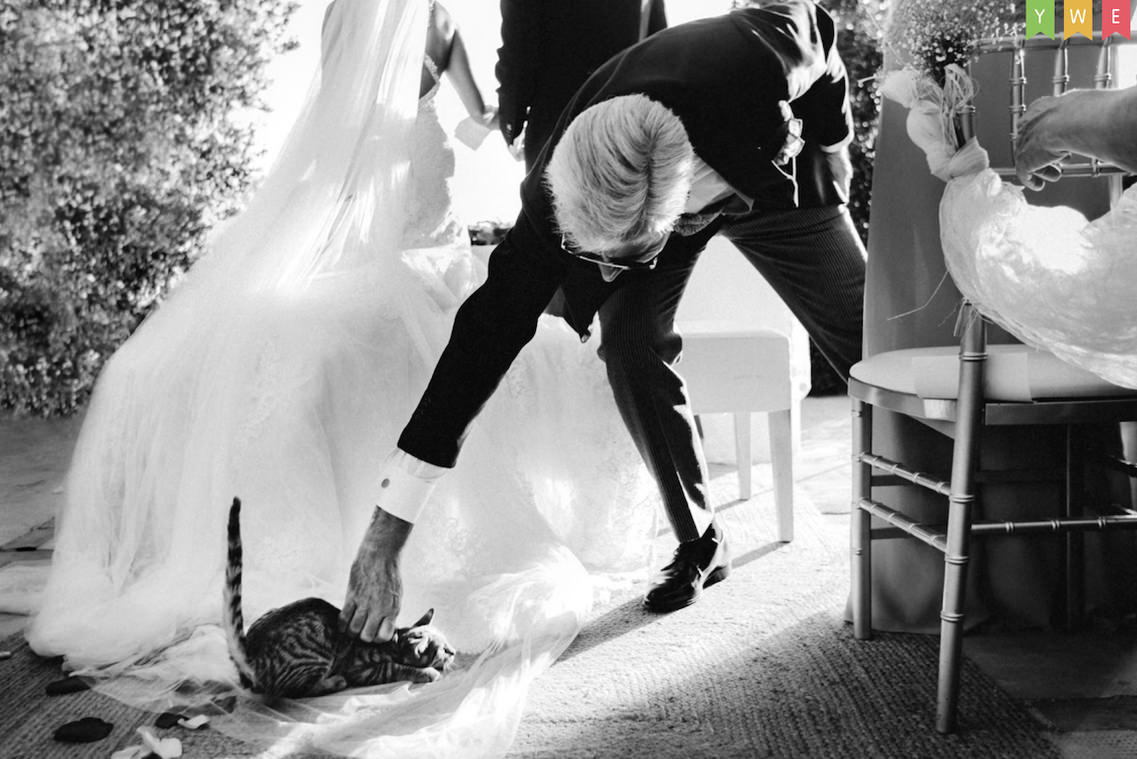 Wedding awards14