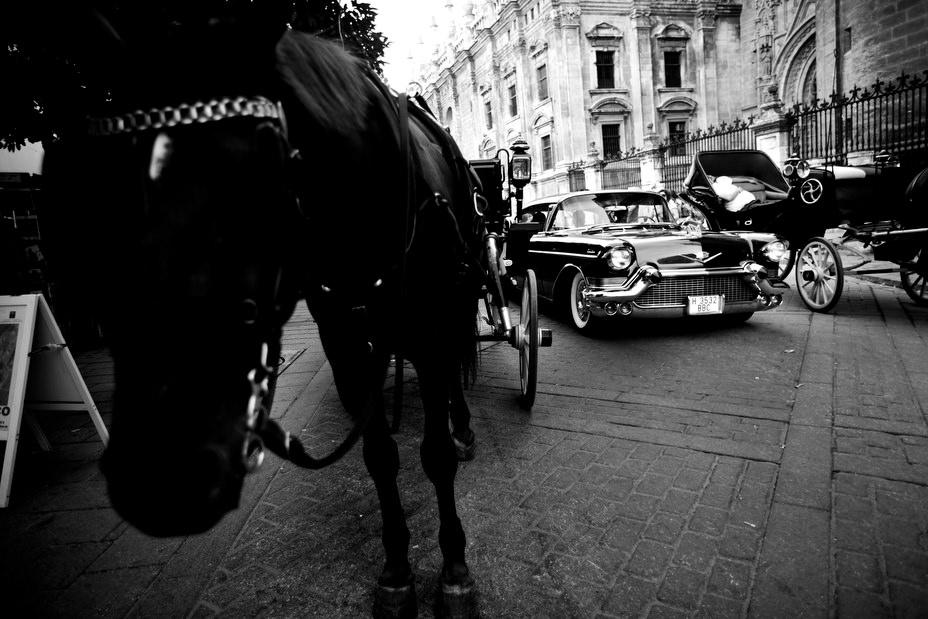 fotografía de boda en Sevilla 24